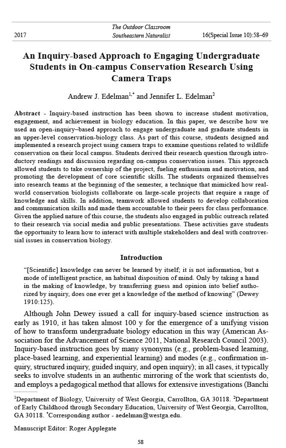 custom research essay video games pdf